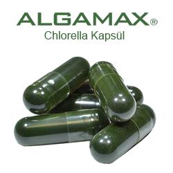 ALGAMAX Chlorella Klorella Yosun Tablet