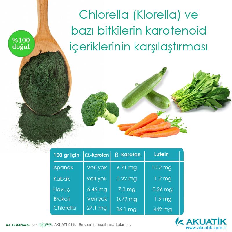 Chlorella Klorella Yosun Bitkilerle Karşılaştırma