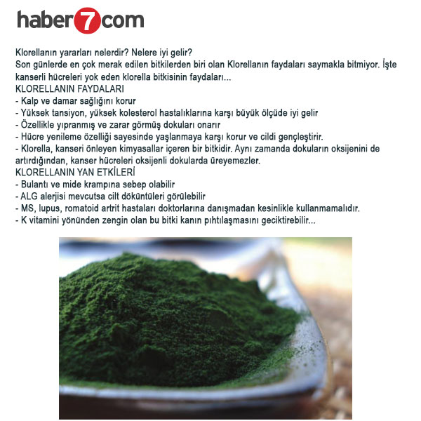 Spirulina Chlorella Klorella Haber7 Haberi